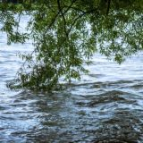 Flooding of Tucker Lake Leads to Closing Of Springs Valley Campgrounds